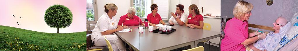 spezialisierte ambulante palliativversorgung